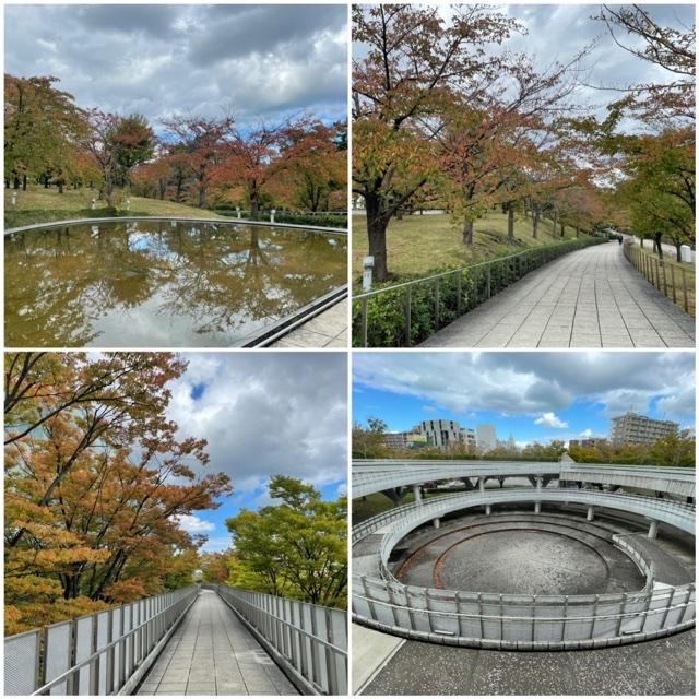2021年10月30日(土) 白山公園、空中庭園エリア
